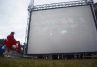 Sarbatoarea castanelor - Baia Mare 2008 (30/128)
