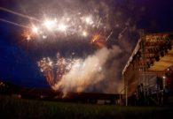Sarbatoarea castanelor - Baia Mare 2008 (102/128)