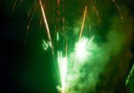 Sarbatoarea castanelor - Baia Mare 2008 (105/128)