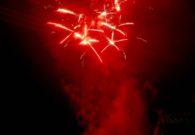 Sarbatoarea castanelor - Baia Mare 2008 (110/128)
