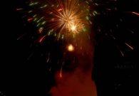 Sarbatoarea castanelor - Baia Mare 2008 (121/128)