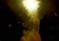 Sarbatoarea castanelor - Baia Mare 2008 (122/128)