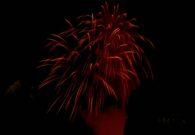 Sarbatoarea castanelor - Baia Mare 2008 (124/128)