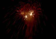 Sarbatoarea castanelor - Baia Mare 2008 (126/128)