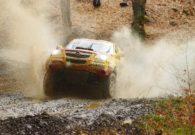 Etapa Dakar 2008 - Baia Mare (93/103)